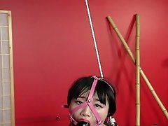 Asian babe gets tied up, ready to be fucked